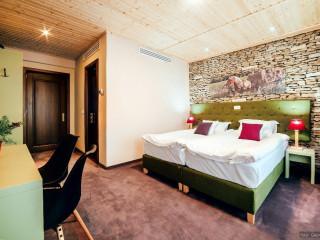 Hotel La Conac in Bucovina